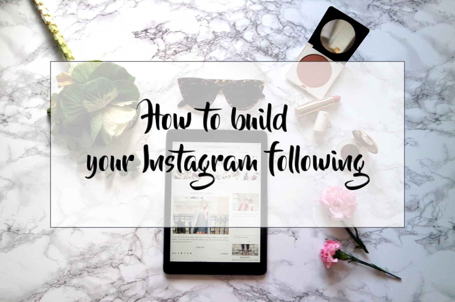 How to build your Instagram following