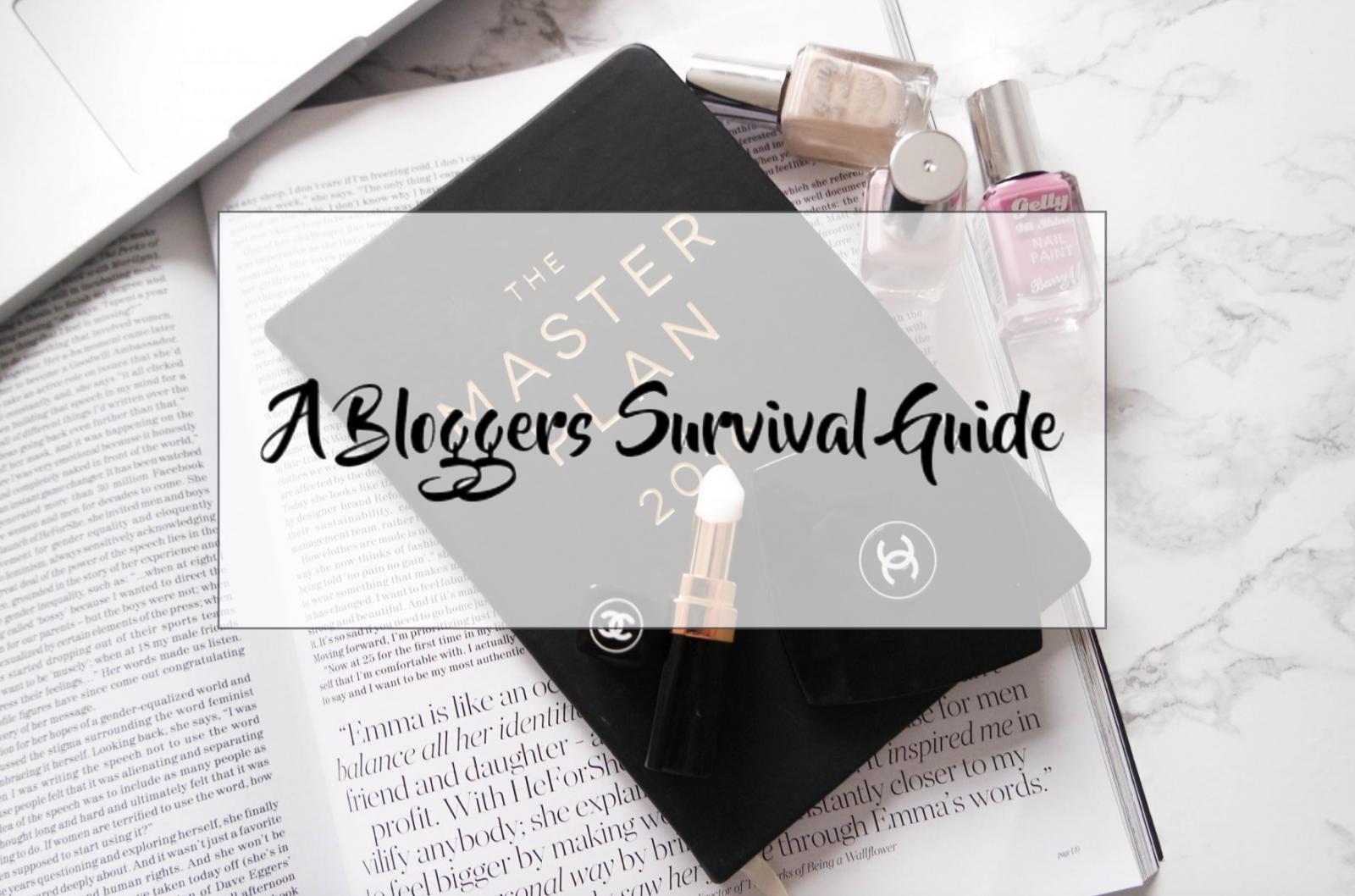 A Bloggers Survival Guide