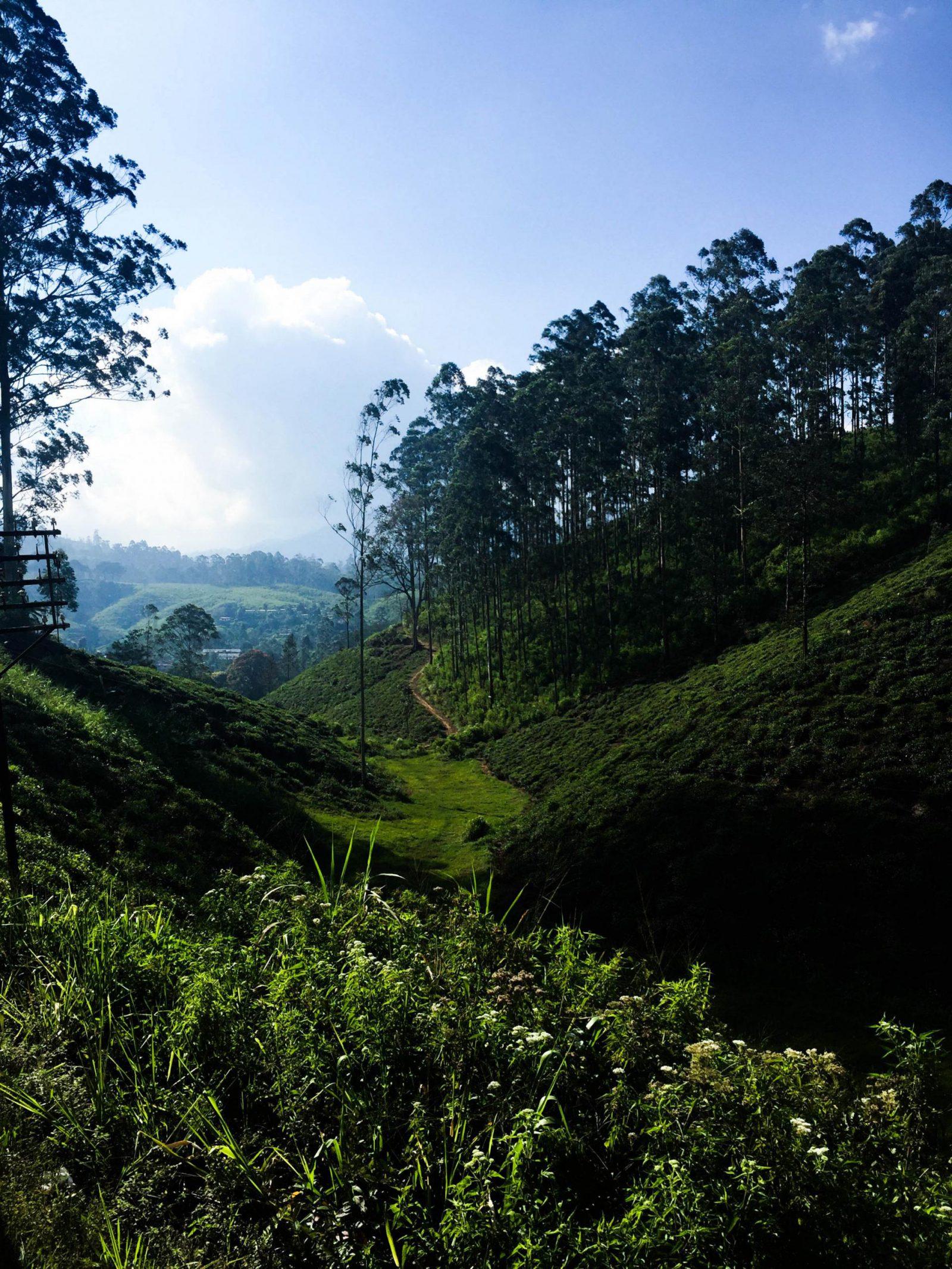 Sri Lanka Travel Diary
