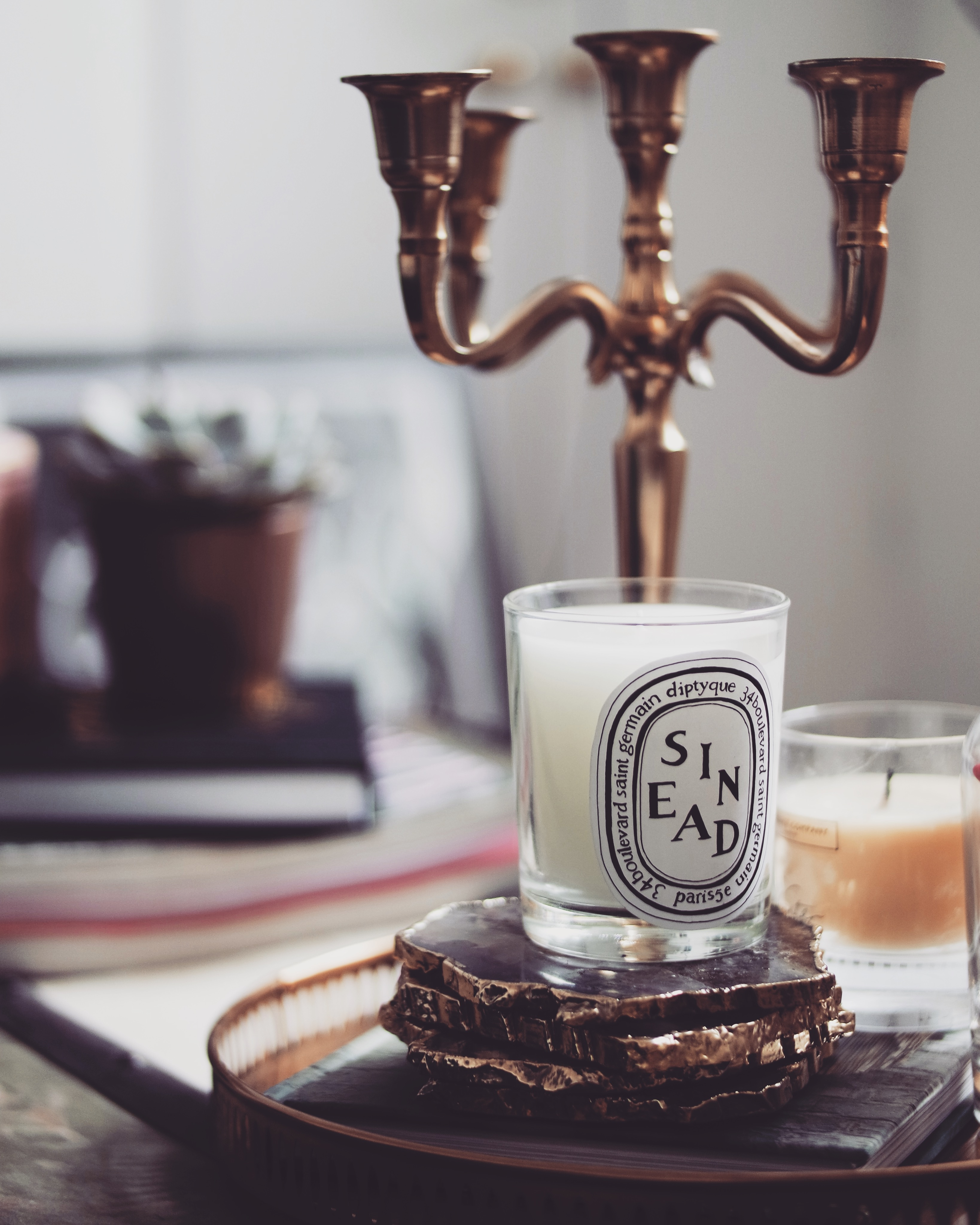 Homeware Haul - Diptyque Candle Baies
