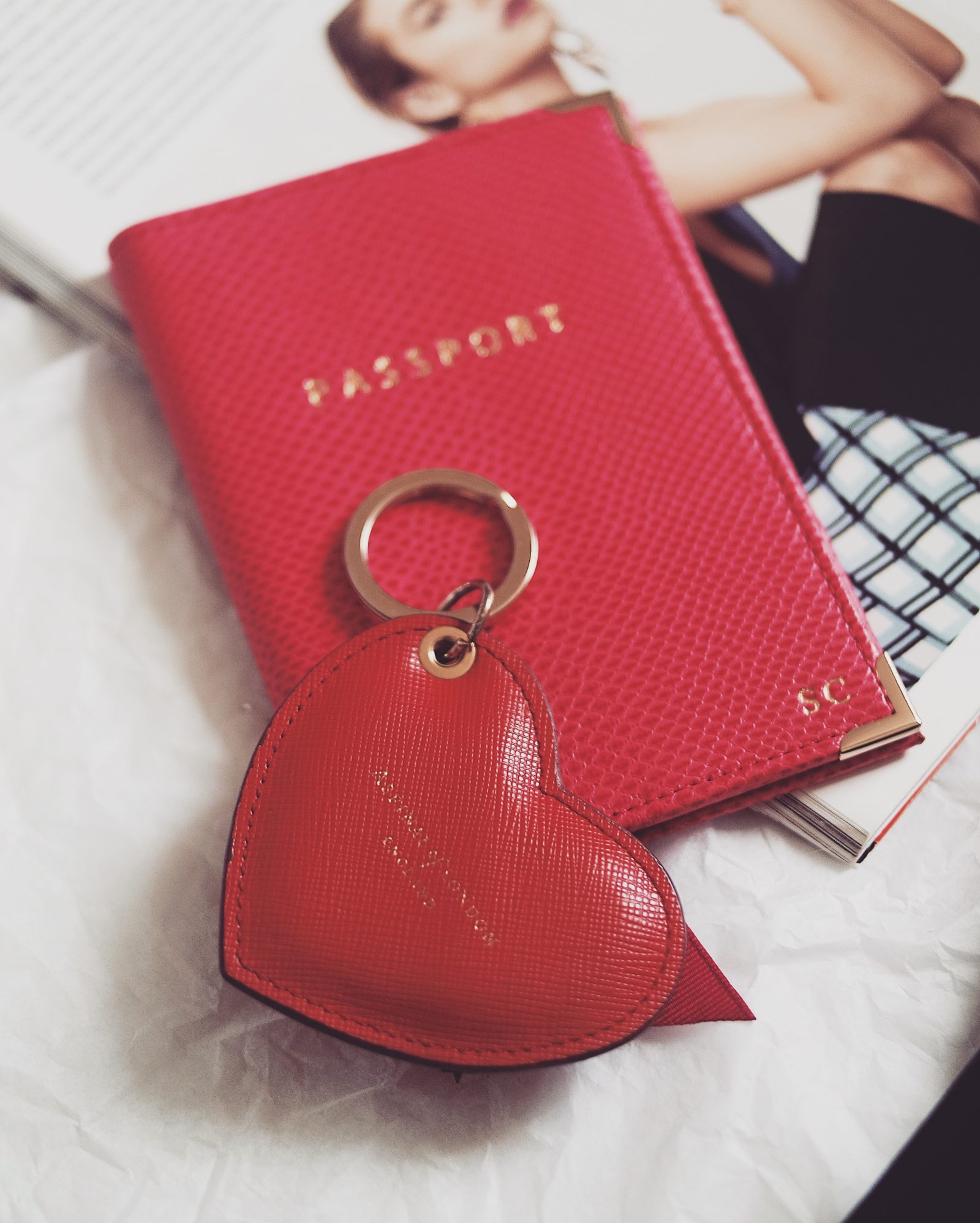 Gift guide for her - Aspinal Passport Holder