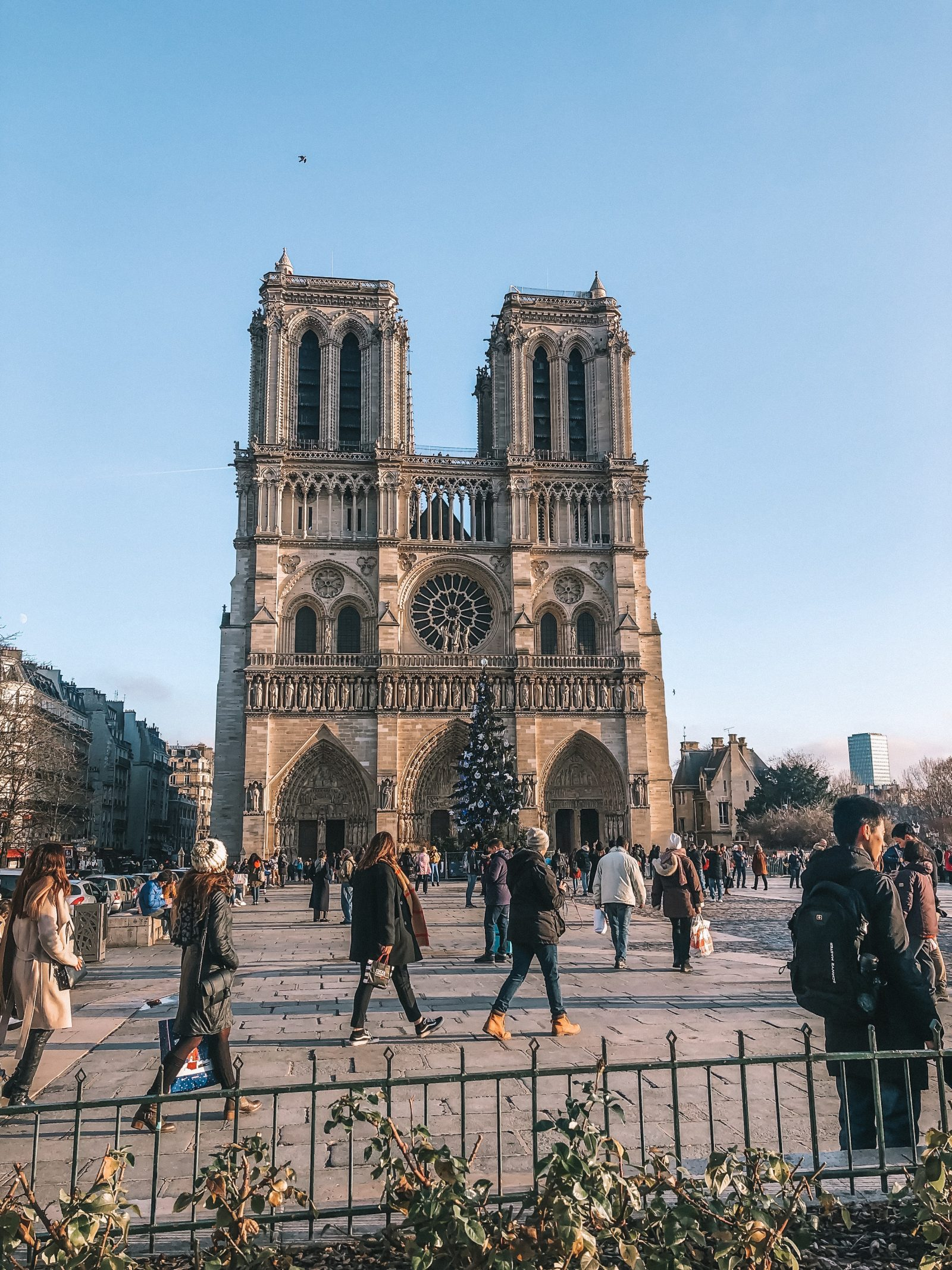 Paris City Guide - Notredame