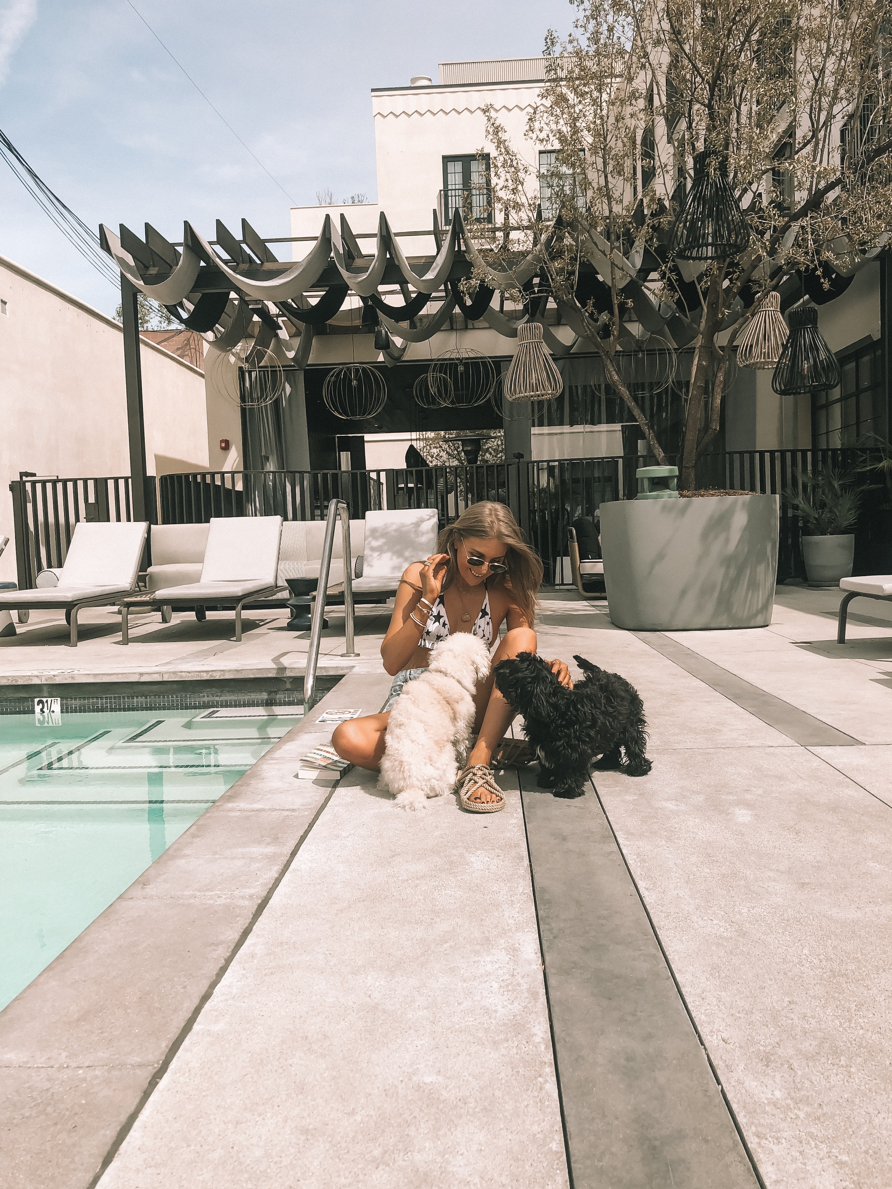 Playing with Puppies by the pool in west hollywood at the Kimpton La Peer Hotel
