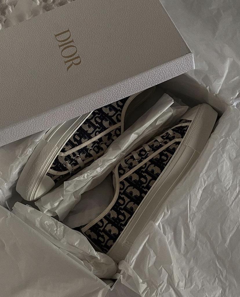 Dior Sneakers Review Walk N Dior