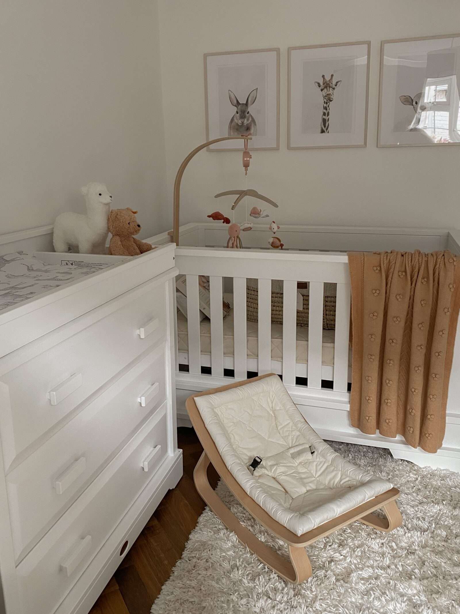 Baby Girl Nursery Decor - Charlie Crane Rocker